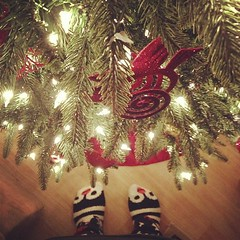 Day 2 - peace. About to sleep in heavenly peace. #penguin socks and goodnight #christmas tree. #fmsphotoaday
