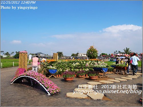 台中新社_2012新社花海節20121125_R0010537