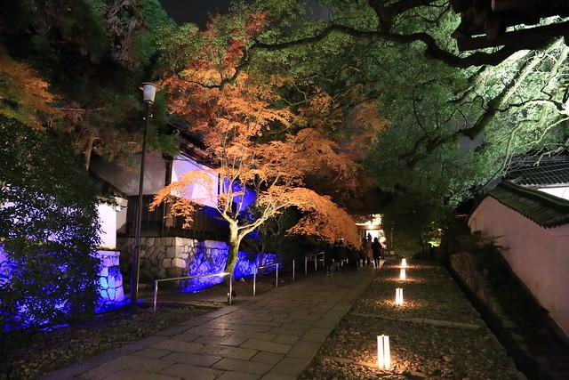 Autumn Shoren-in 青蓮院門跡
