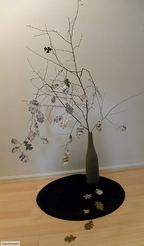 Quercus pecunia Lambertus