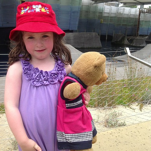 Waiting for the seal show at the Melbourne Zoo with class bear Tinker Brownie. Of all the weeks to have to look after a huge bear...