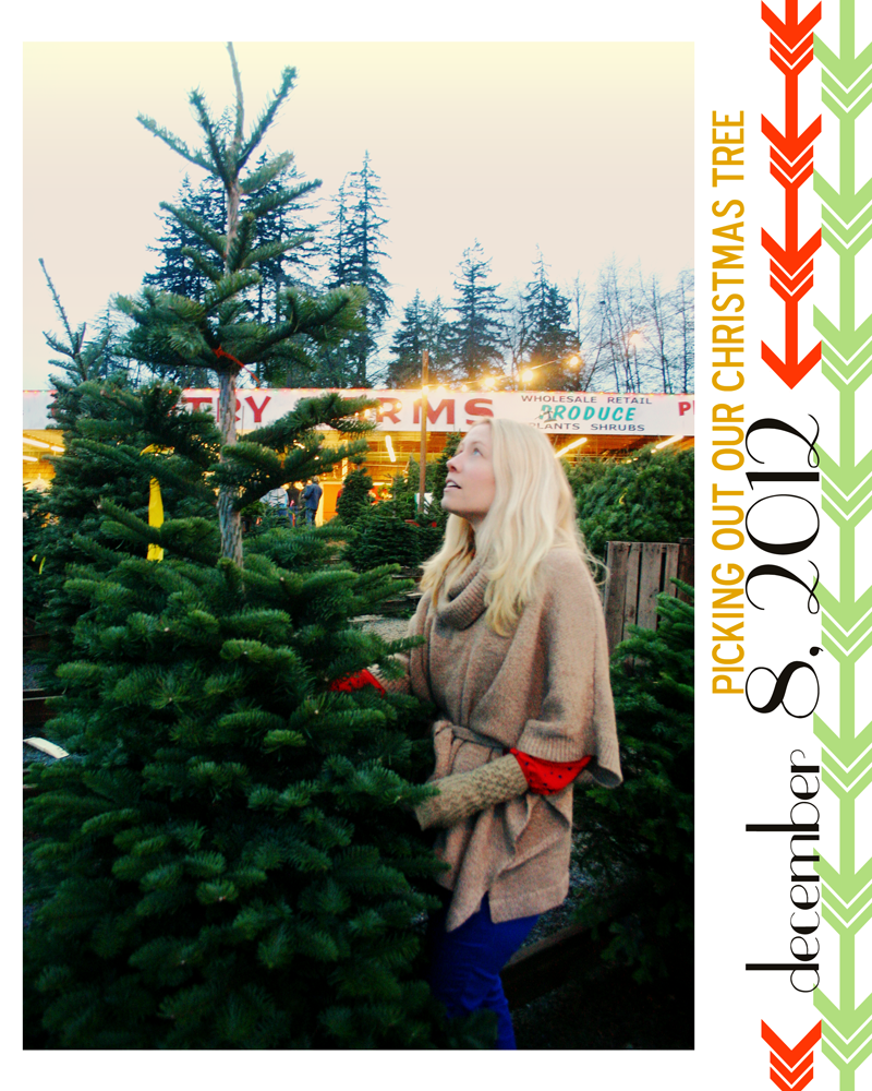 {december daily day 8} picking out our christmas tree