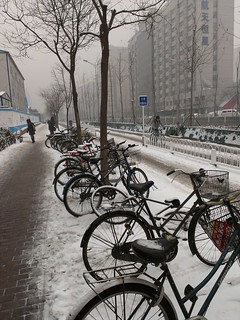 Bikes covered by snow