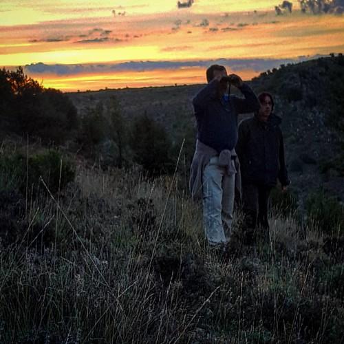 Disfrutando de la #berrea en la #SierraDeAlbarracín .