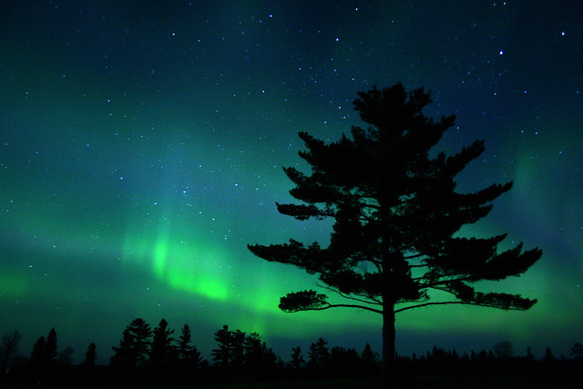 Aurora in Minnesota.  Image credit:  Charlie Stinchcomb (CC-BY)