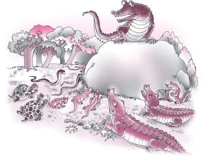 NCERT Class VI English Chapter 9 What Happened to the Reptiles