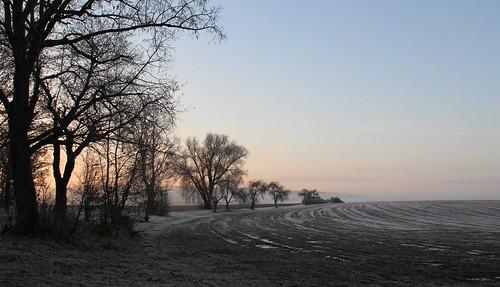 sky tree field germany landscape village hoarfrost bluesky thuringia soil blauerhimmel schackendorf rauhreif