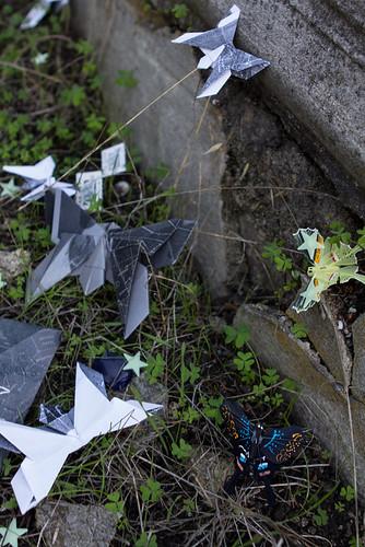 Moth Mail