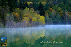 LE 4 STAGIONI: AUTUNNO - THE 4 SEASONS: AUTUMN