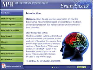brain-basics-module