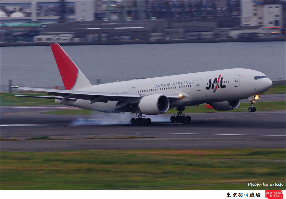 Japan Airlines - JAL / JA705J / Tokyo - Haneda International
