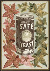 Warner's Safe Yeast [front]