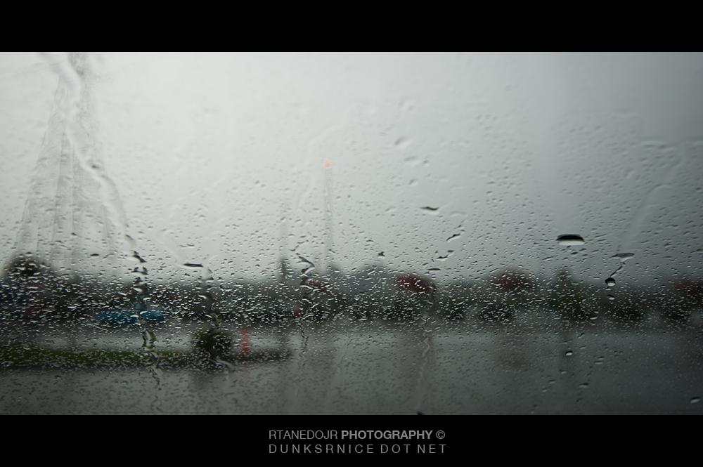 321 of 366 || Rain.