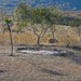 Wheat threshing area - lugar para trillar el trigo; Región Mixteca, Oaxaca, Mexico por Lon&Queta