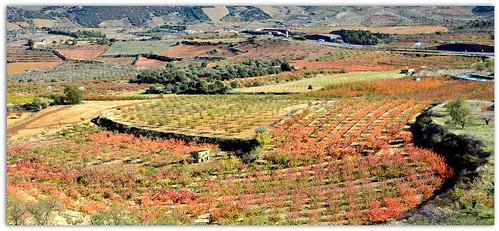 Valle de los Cerezos