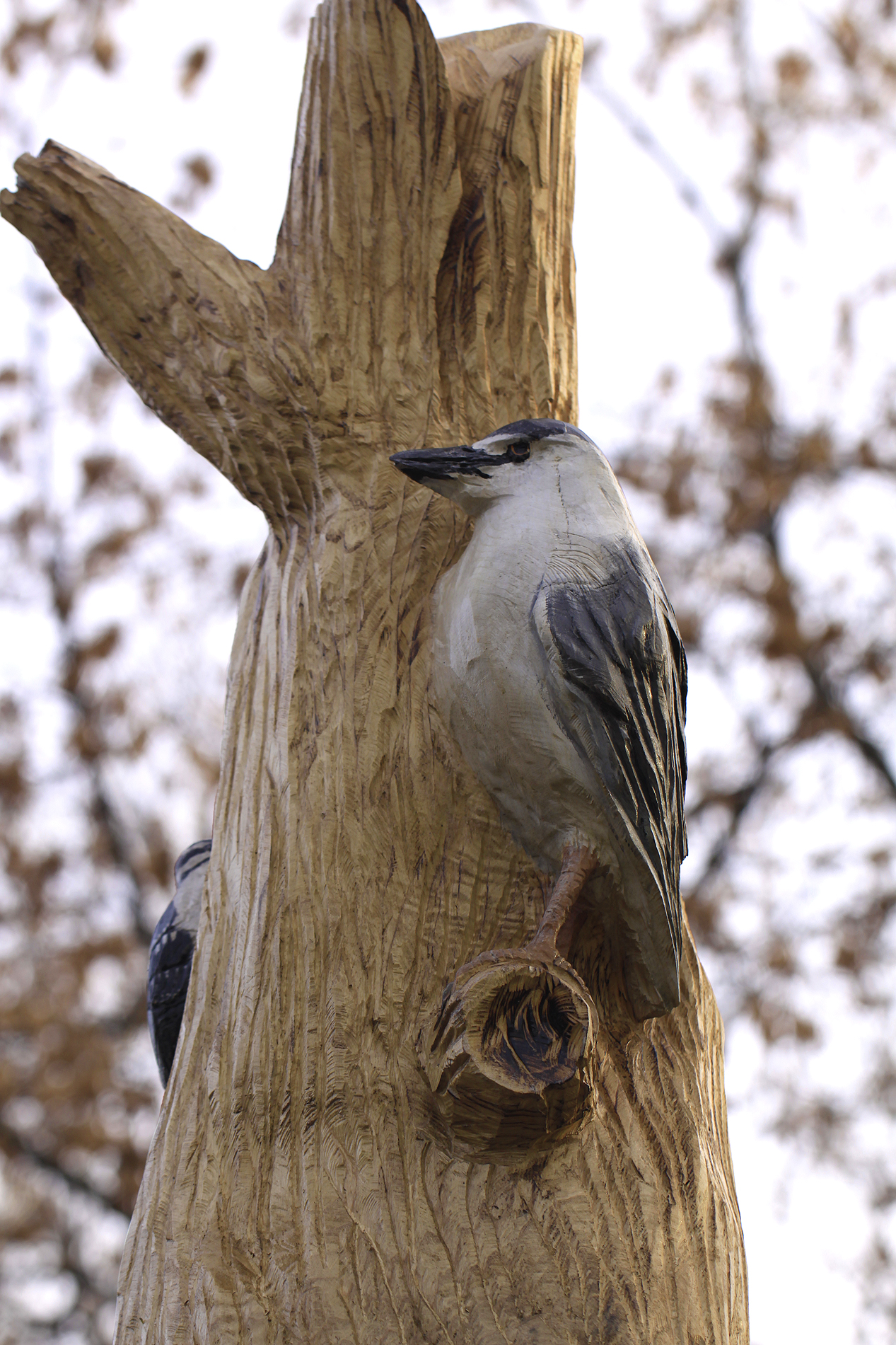 tree carving night heron