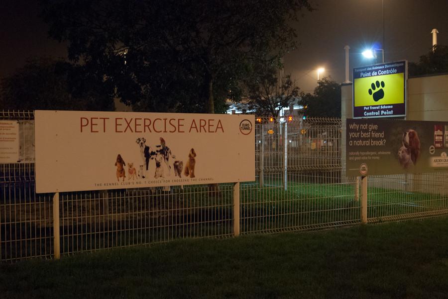 Calais - pet  exercise