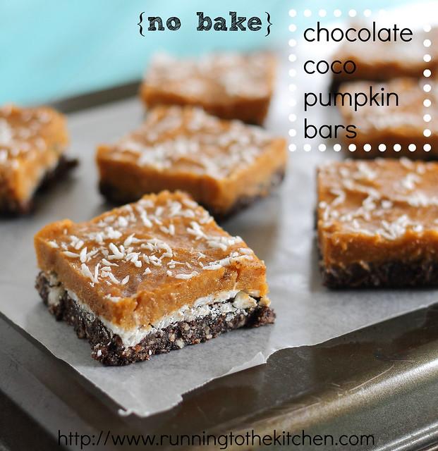 No bake chocolate coco pumpkin bars