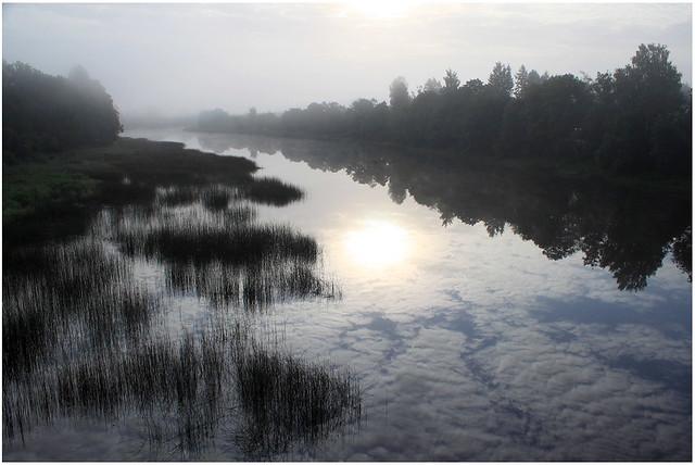 Fog on the Pärnu river