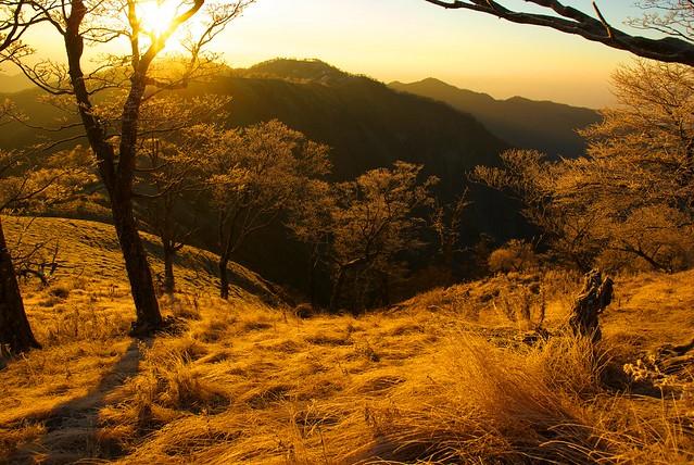 蛭ヶ岳から丹沢山方面を望む