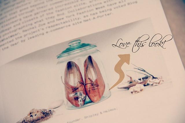 style feed e