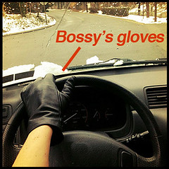 Bossy's Gloves Are Off