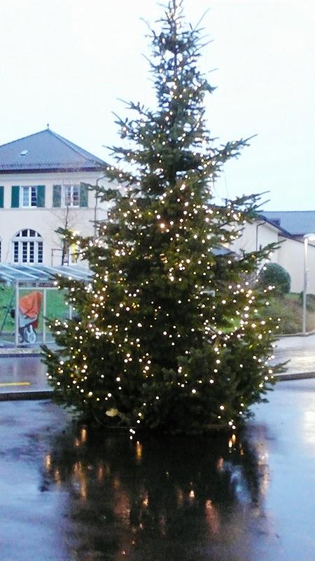 Xmas tree Langendorf