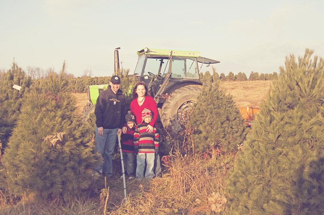 Family at the Tree Farm - Hazy
