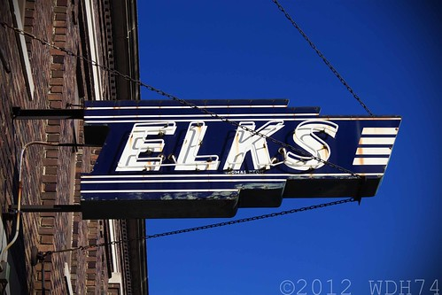Elks by William 74