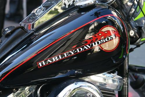 Harley Davidson Logo on Bike