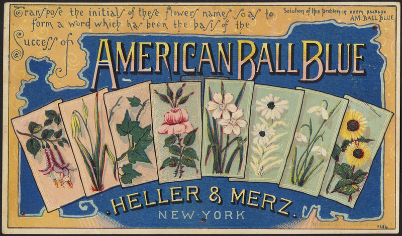 Transpose the initials of these flowers names so as to form a word which has been the basis of he success of American Ball Blue [front]