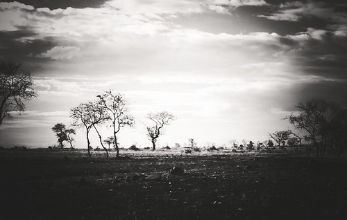 white black vintage project landscape ian freedom countryside noir remote washed adventures henley arusha 4s iphone ianography uploaded:by=flickrmobile flickriosapp:filter=nofilter treestalker