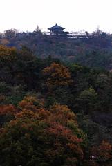Autumn_Seoul_Bukaksan_logo_02