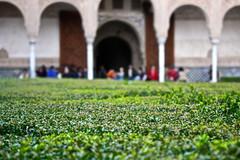 Nasrid Palaces / Palacios Nazaríes, La Alhambra