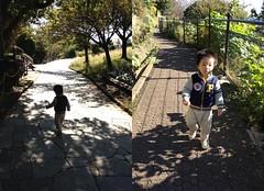 西郷山公園にて (2012/11/10)