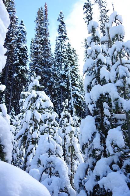Snowshoeing Rummel Lake-4