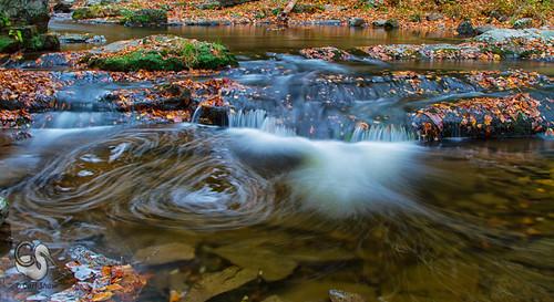 autumn fall tn tennessee greatsmokymountains laurelcreekroad canon7d roadsideriver endlessreach1 carlsshaw carlshawphotography