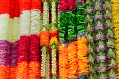 Flowers, Little India, Deepavali