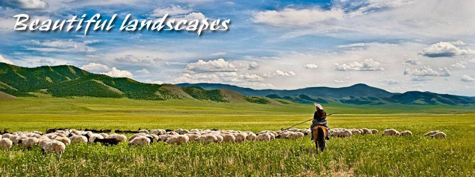Adventures of Mongolia