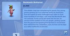 Bucktooth Butternut