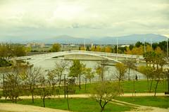 Parque Juan Carlos I - VIII