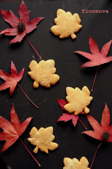 biscotti curcuma mandarino