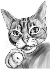 Whisper izzi sketch plain