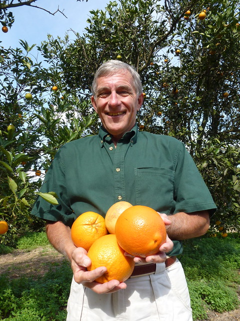 gary-scott-orange-grove