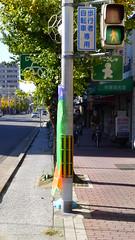 Kyoto Bike Lane
