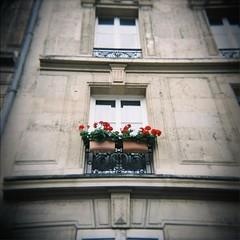 Looking up in Paris