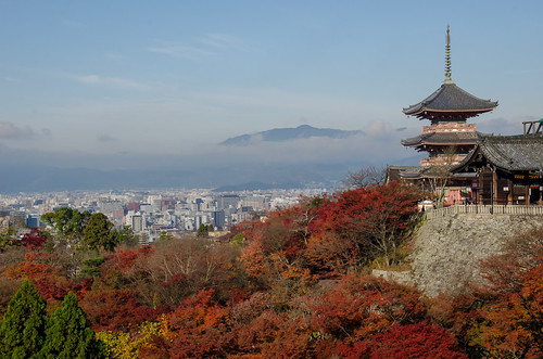 The Red leaves of Kiyomizu-Dera, Kyoto / 清水寺の紅葉(京都)