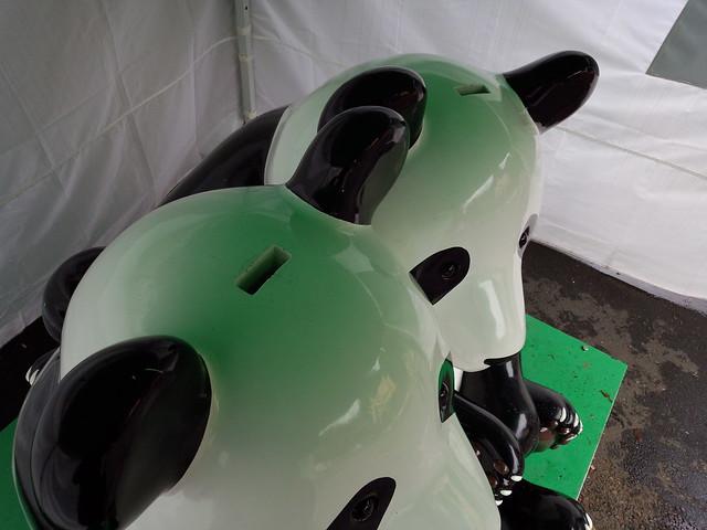 パンダの頭頂部