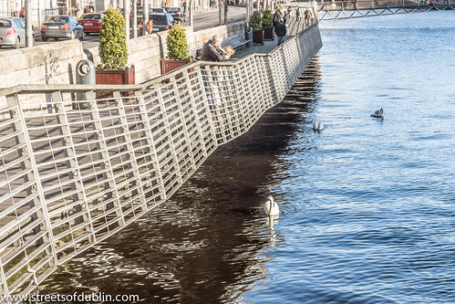 Liffey Boardwalk - Dublin (Feeding The Swans) by infomatique