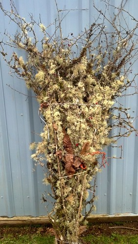 mossy branches wholesale